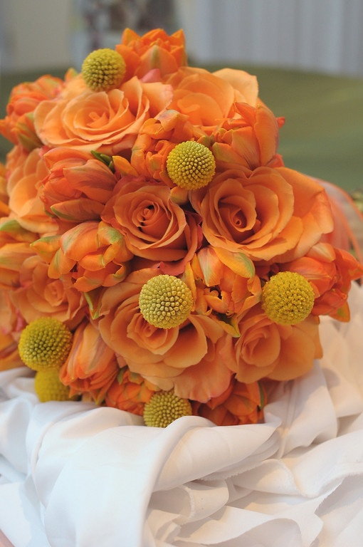 Gorgeous orange colored roses