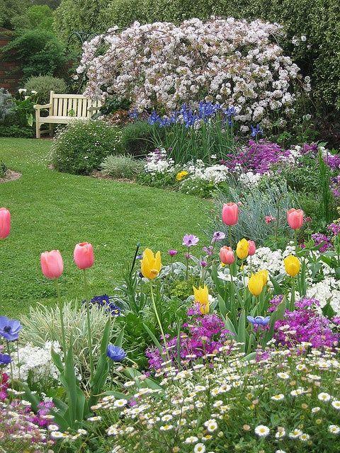 Spring cottage garden. Beautiful