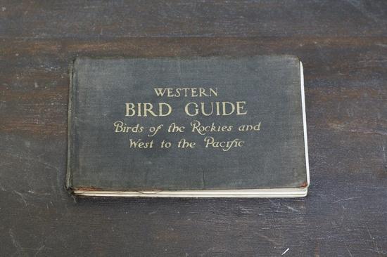Western Bird Guide