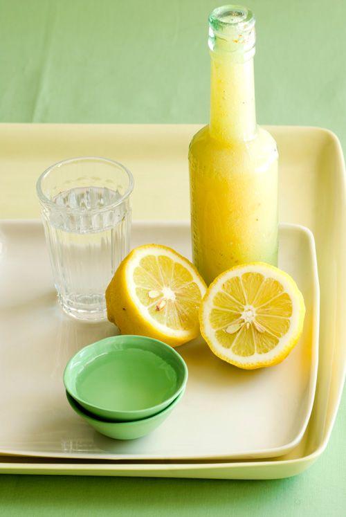 lemon chili marmalade cocktail (gin)