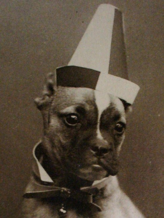 This boxer wearing a hat, '20s