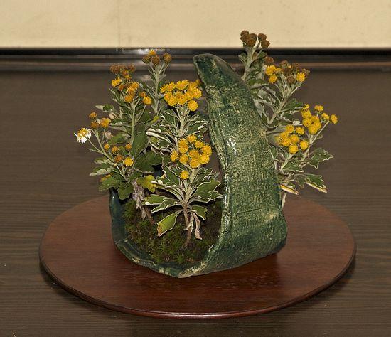 kusamono in an interesting handmade pottery ring
