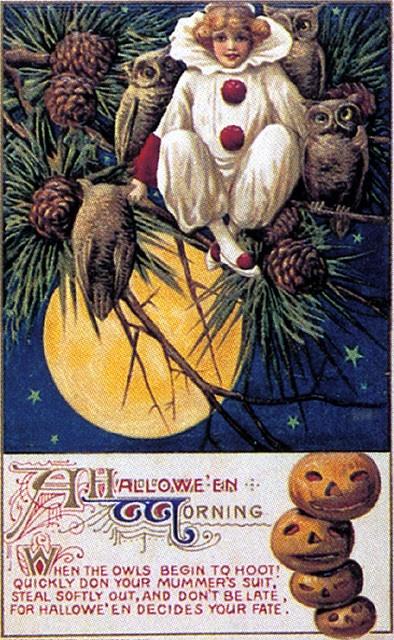 Owl/Tree Scene--Vintage Halloween Postcard