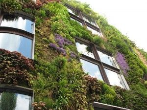 diy vertical garden {diy guides}....so cool and beautiful!