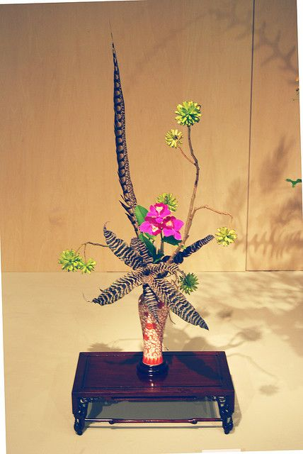 Ikebana Ohara with a birds feather