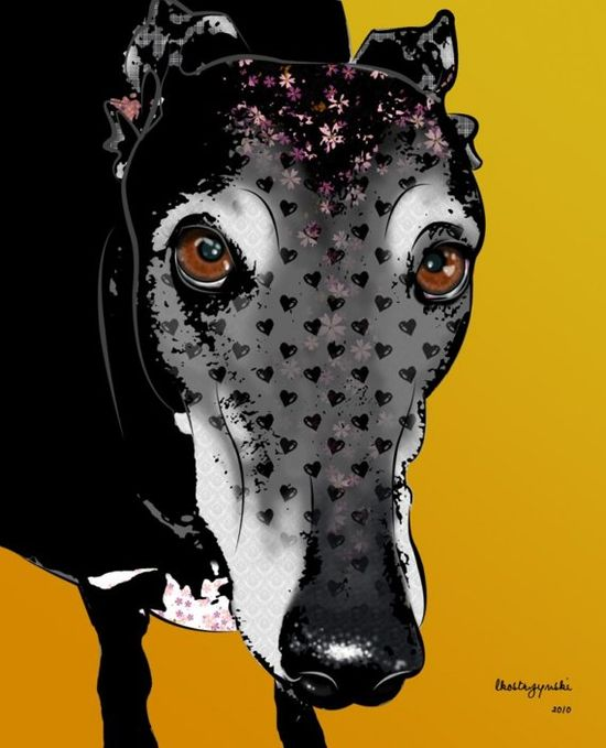 Jamey, 8x10 Greyhound Pop Art Print, Whippet Dog Art