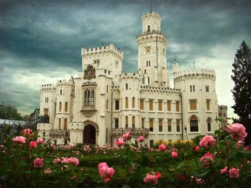 castle and roses