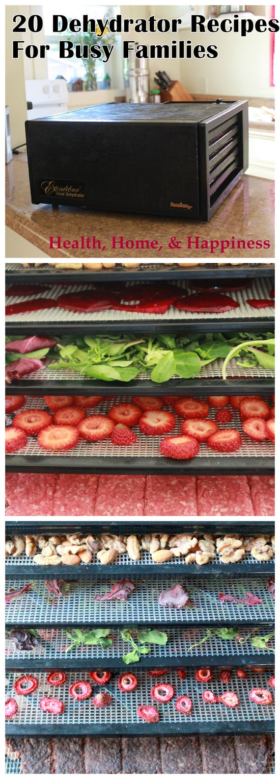Dehydrator Recipe Roundup- 20 recipes that use your dehydrator for everything from cayenne beef jerky from a roast to sweet-tart dried kiwi to homemade yogurt! Preserve the harvest and provide healthy snacks at the same time!