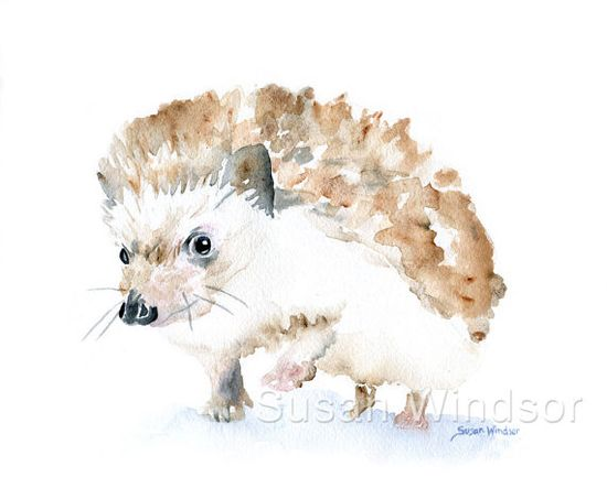 Watercolor Painting Hedgehog Giclee Print 8x10 by SusanWindsor,