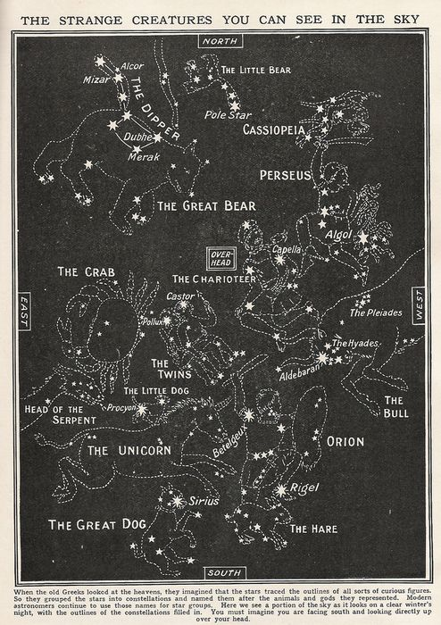 Constellations:  the strange creatures you can see in the sky.