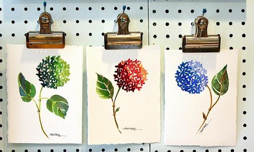 Hydrangea watercolor paintings