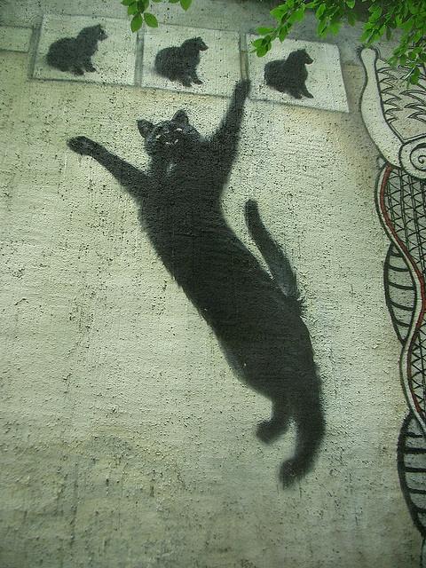 Street Art - Jena, Thuringia, Germany