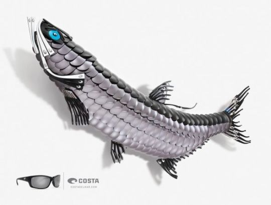Costa Sunglasses: Tarpon by McGarrah Jessee     Animals in Print Ads