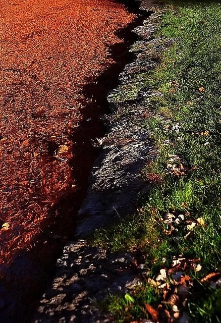 Fall colors on Geyser Lake, Ohio