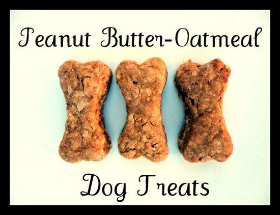 oatmeal peanut butter dog treats