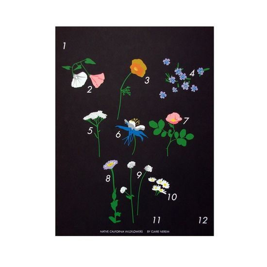 Wildflowers Calendar / Claire Nereim. $50.00, via Etsy.