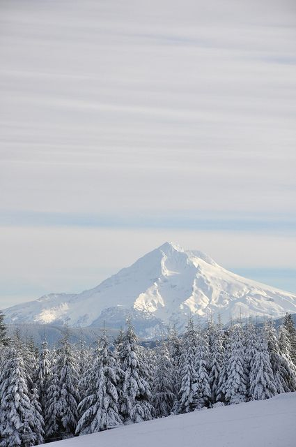 Mt. Hood, Oregon.I want to go see this place one day. Please check out my website Thanks.  www.photopix.co.nz