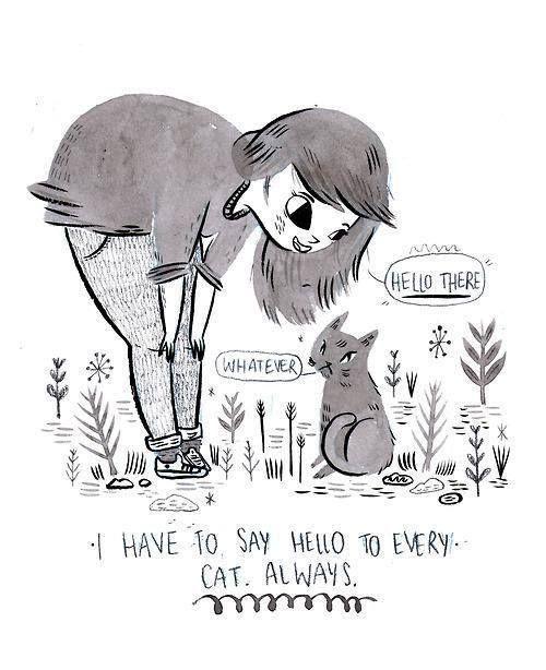 i like cats