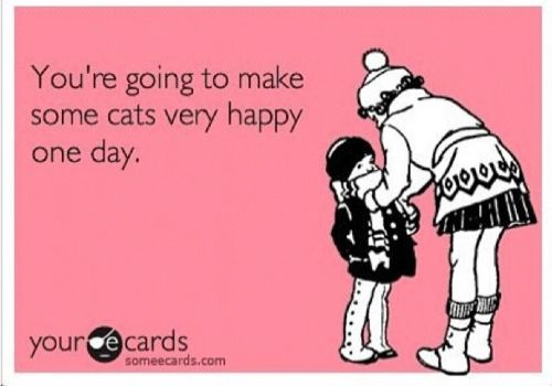 Cat Lady. This is me.