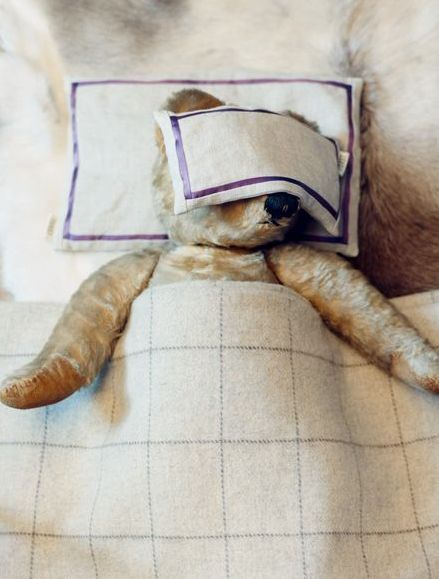 "Teddy with migraine. Find creative ways to show your child that pain isn't always visible (remove rag, look for ""signs of pain"" - can't see any? why not?)"