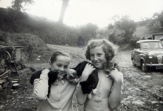 Vintage kitty cuteness, late 1950s style. #cats #vintage #1950s #fifties #pets #photography #kids