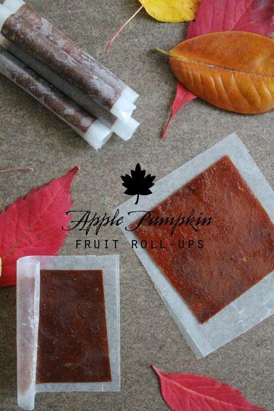 Homemade Apple Pumpkin Fruit Roll-Ups