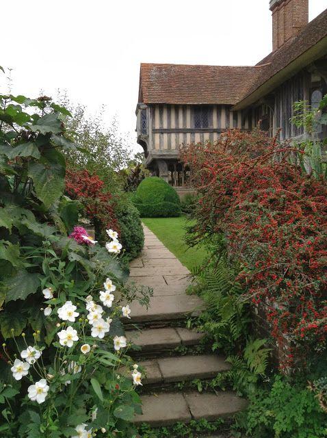 Cotoneaster & Japanese Anemone at Great Dixter ~Mercurelli's Garden Design blog