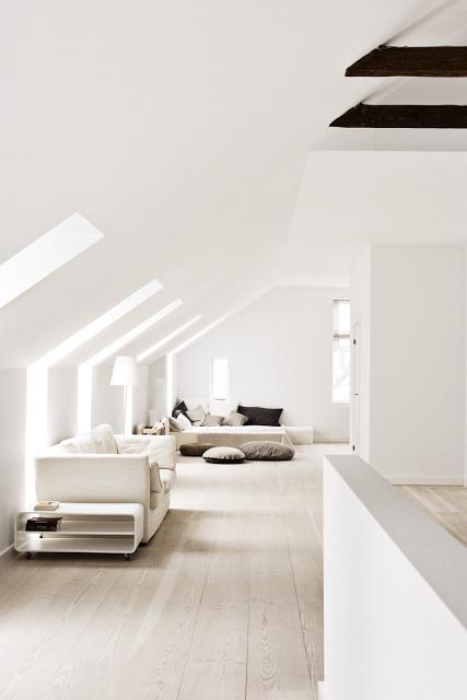 window/skylight