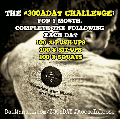 The November #300aDAY Fitness Challenge - you in?