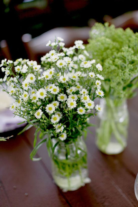 daisy flower arrangements.