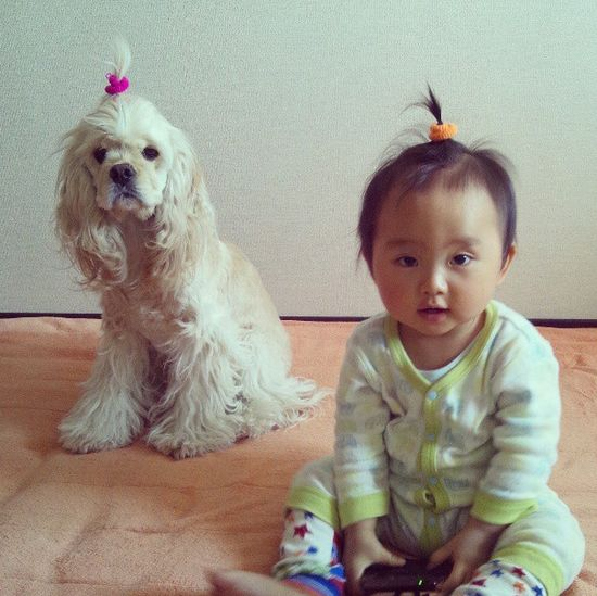 we do each other's hair #cute #babies #animals #dogs #baby