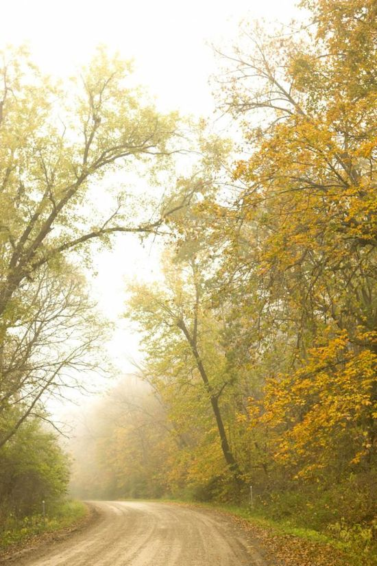 Iowa's Historic Hills Scenic Byway: Gorgeous in fall! More about this route: www.midwestliving...