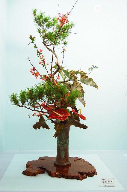 Ikenobo arrangement with Anthurium flowers #Florals #Floral Design #Flower Arrangements #Ikebana
