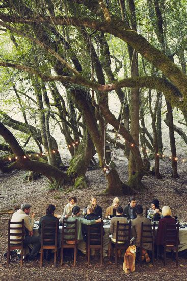 Reception in the woods