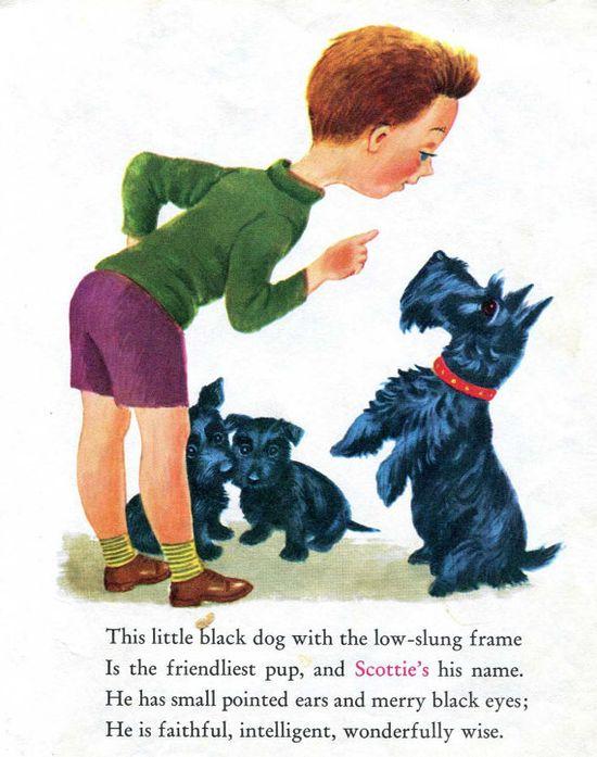 Scottish Terrier and Irish Setter Dog Illustrations by RoxyRani, $6.00