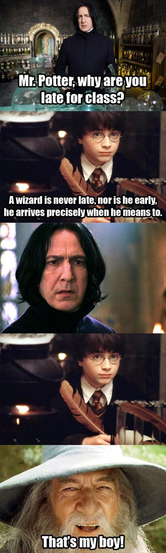 a wizard is never late, nor is he early, funny harry potter quotes