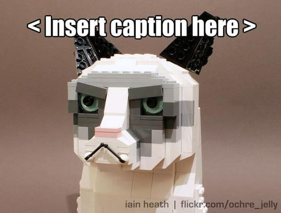 grumpy cat pictures with captions