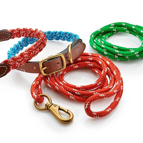 Colorful Pet Leashes.
