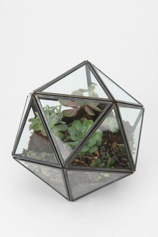 Turning Triangles Terrarium $39