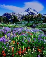 Bend, Oregon Cascade Mountains Gallery