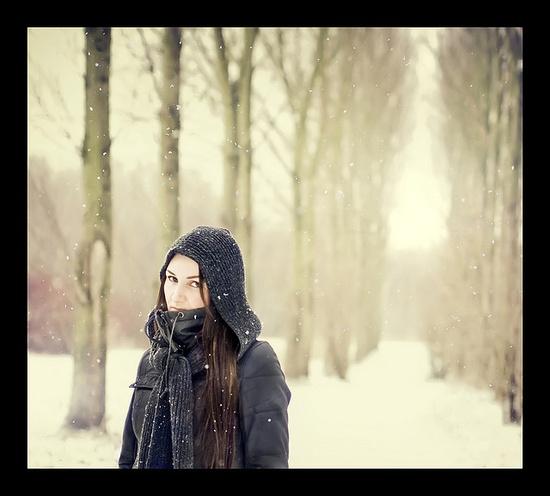 winter  from flickr
