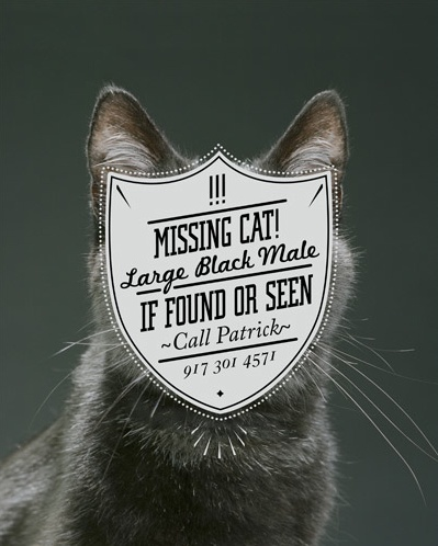 Re-art directed missing cat poster