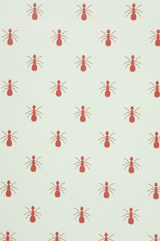 fire ants wall paper.