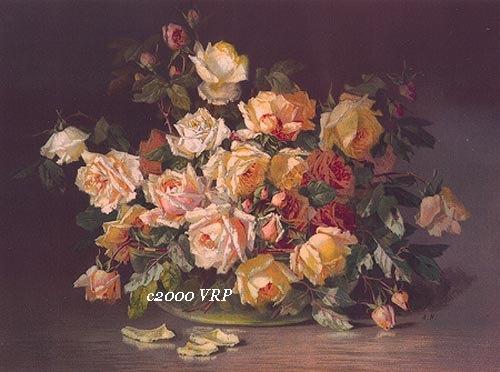 Vintage Rose prints...C. Klein