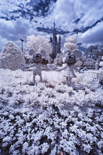Infrared Photography Guide & Tips - photos of Disney that make it look like the parks are covered in snow!