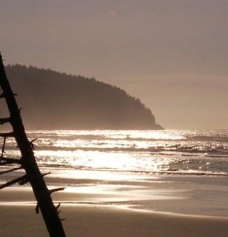 Pacific City - Travel Oregon