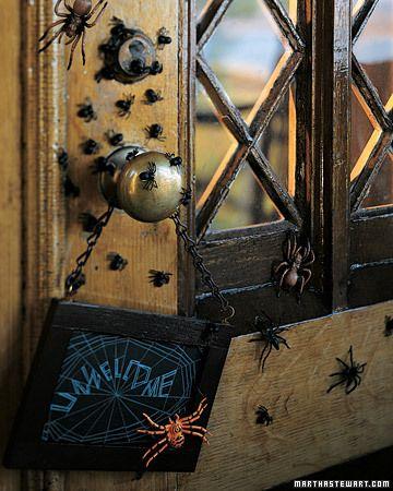 Spiders on the door