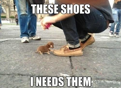 I'll Look Fabulous in Them!