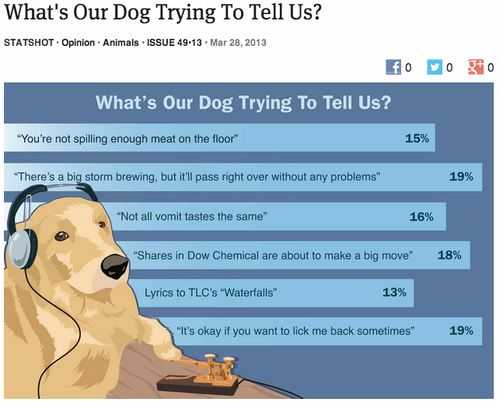 What your dog is trying to tell you?