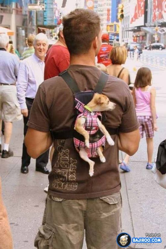Funny People in the World (10 Images)
